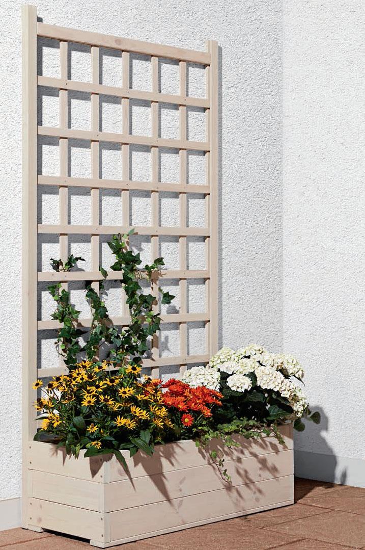 Mr. Gardener Pflanzkasten mit Rankgitter beige ca. 170x90x40cm ...